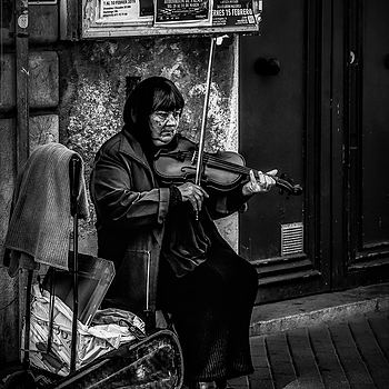 The violinist | D-LUX SUMMILUX VARIO 24-75 1.7 ASPH