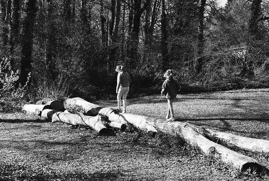Girls on a Log | LEICA ELMAR 50MM F2.8 <br> Click image for more details, Click <b>X</b> on top right of image to close