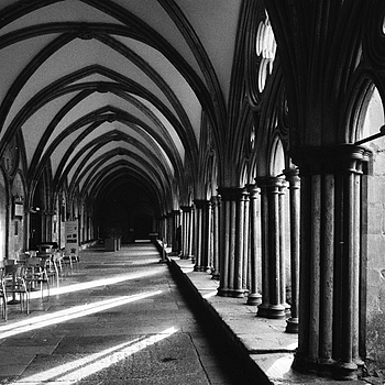 The Cloisters | LEICA ELMAR 50MM F2.8