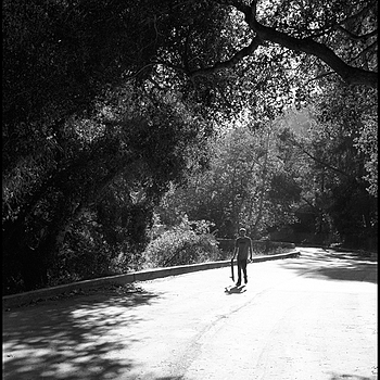 under the tree skate | LEICA SUMMICRON 35MM F2. <br> Click image for more details, Click <b>X</b> on top right of image to close