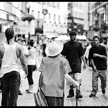 Walking Tall | LEICA APO-SUMMICRON 90MM F2 ASPH <br> Click image for more details, Click <b>X</b> on top right of image to close
