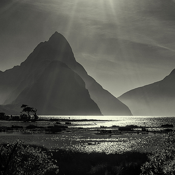 Milford Sound | LEICA SUMMICRON 35MM F2 1ST VERSION