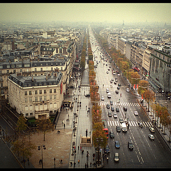 Paris, Autumn | CV 28MM / F 2.0 ULTRON <br> Click image for more details, Click <b>X</b> on top right of image to close