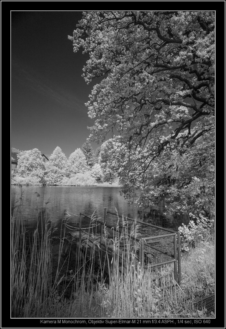the MM with 21mm and infrared filter R72 | LEICA 21MM SUPER-ELMAR-M F/ 3.4 ASPH LENS <br> Click image for more details, Click <b>X</b> on top right of image to close