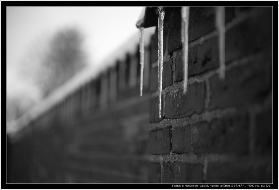 winter is back | LEICA NOCTILUX 50MM F0.95 ASPH <br> Click image for more details, Click <b>X</b> on top right of image to close