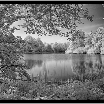 the MM with 21mm and infrared filter R72 panorama | LEICA 21MM SUPER-ELMAR-M F/ 3.4 ASPH LENS <br> Click image for more details, Click <b>X</b> on top right of image to close