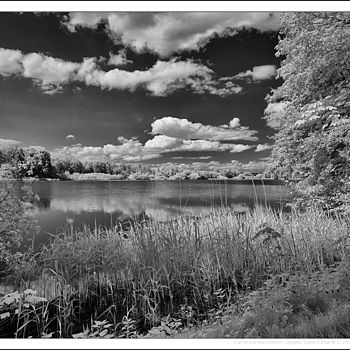 Leica M Monochrom with Super-Elmar-M 21mm/3.4 @ f/9, IR filter R715 | LEICA 21MM SUPER-ELMAR-M F/ 3.4 ASPH LENS