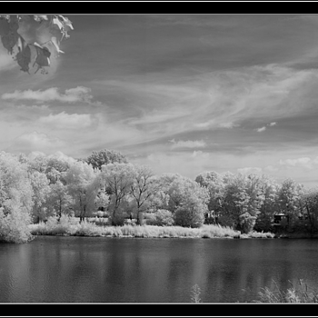 NEX7-IR converted to infrared | LEICA SUMMILUX 35MM F1.4 ASPH