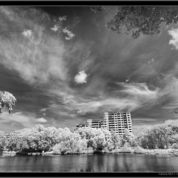 NEX7-IR converted to infrared | LEICA SUMMILUX 35MM F1.4 ASPH <br> Click image for more details, Click <b>X</b> on top right of image to close