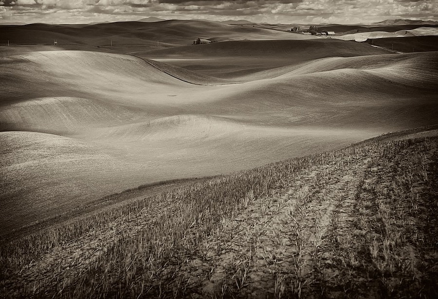 Palouse, Washington | LEICA APO-SUMMICRON 90MM F2 ASPH <br> Click image for more details, Click <b>X</b> on top right of image to close