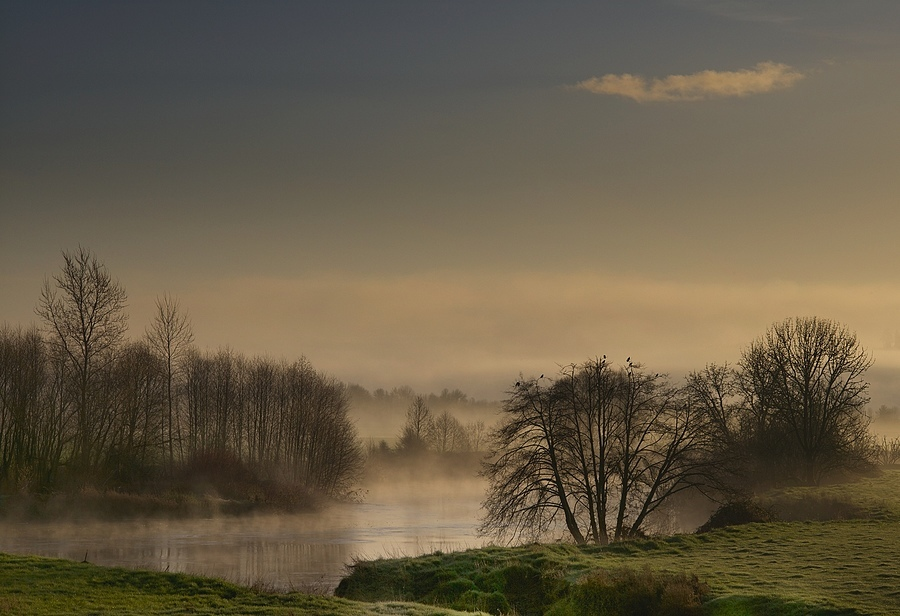 Chehalis Morning | LEICA APO-SUMMICRON 90MM F2 ASPH <br> Click image for more details, Click <b>X</b> on top right of image to close