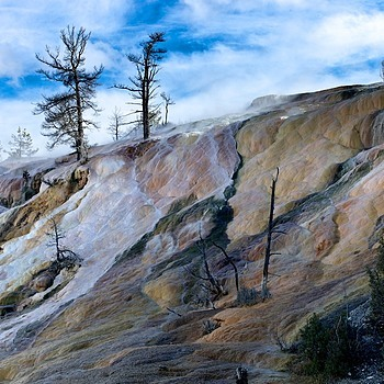 Mammoth Hot Springs, Yellowstone | SUMMILUX-M 1:1.4/50 ASPH