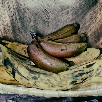 A Bunch of Plantains | LEICA APO-SUMMICRON 90MM F2 ASPH <br> Click image for more details, Click <b>X</b> on top right of image to close