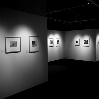 Photo Exhibition Lausanne | LEICA ELMARIT 24MM F2.8 ASPH <br> Click image for more details, Click <b>X</b> on top right of image to close