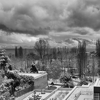 Lausanne, yesterday | SUMMILUX-M 1:1.4/50 ASPH <br> Click image for more details, Click <b>X</b> on top right of image to close