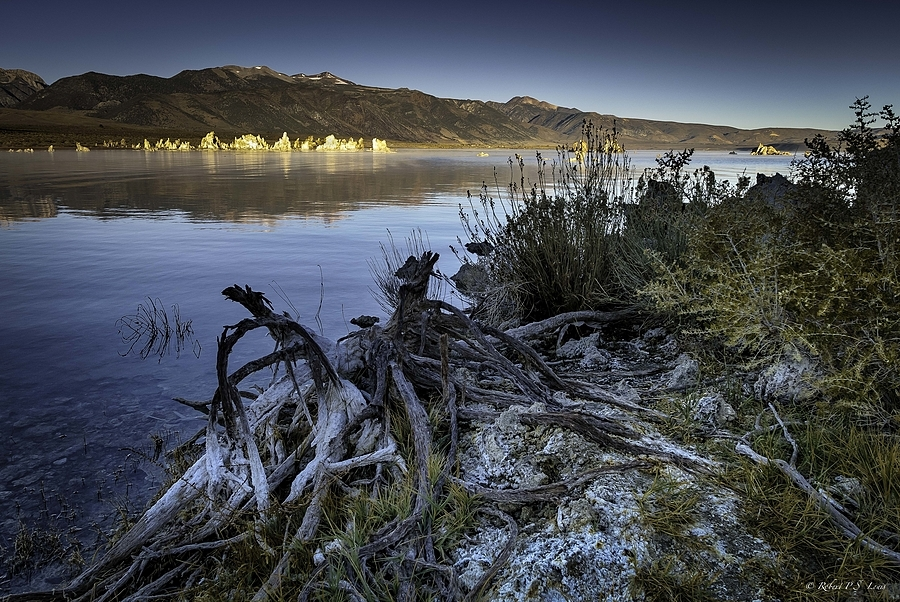 Dawn at Mono Lake | LENS MODEL NOT SET <br> Click image for more details, Click <b>X</b> on top right of image to close