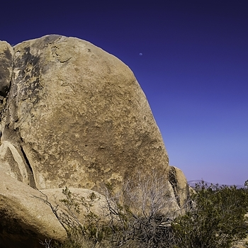 Moonrise - Joshua Tree NP | LENS MODEL NOT SET <br> Click image for more details, Click <b>X</b> on top right of image to close