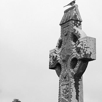 bird on celtic cross | DG VARIO-SUMMICRON 28-90MM F2-2.4 <br> Click image for more details, Click <b>X</b> on top right of image to close