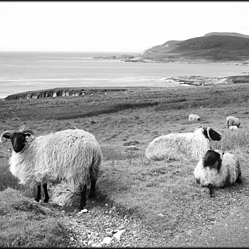 achill island | DG VARIO-SUMMICRON 28-90MM F2-2.4 <br> Click image for more details, Click <b>X</b> on top right of image to close