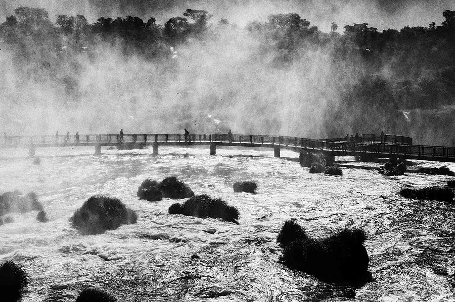 Iguazu | SUMMILUX-M 1:1.4/50 ASPH <br> Click image for more details, Click <b>X</b> on top right of image to close