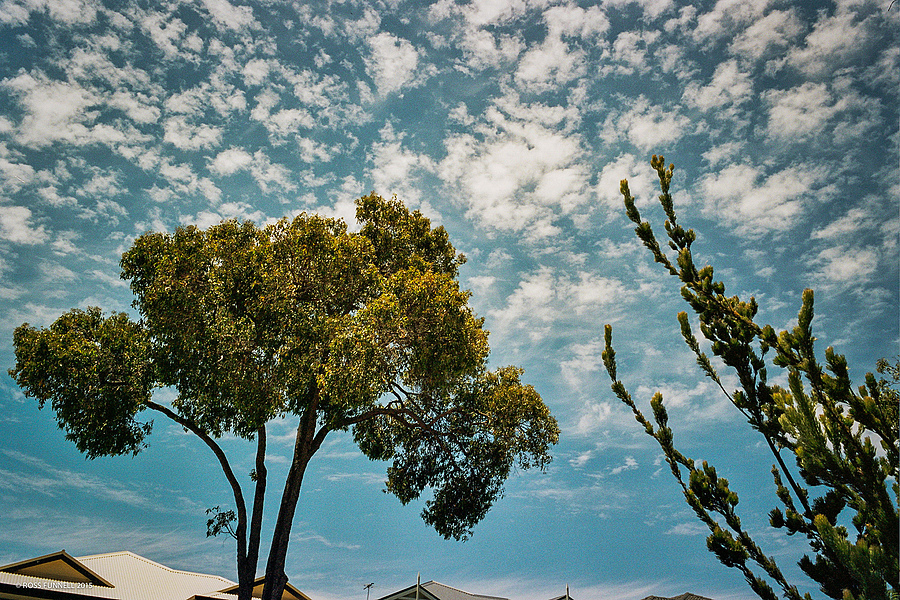 The summer skies in Perth | LEICA SUMMICRON 90MM F2 <br> Click image for more details, Click <b>X</b> on top right of image to close