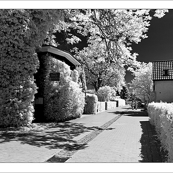 Zingst Street in InfraRed | KOBALUX 21MM F/2.8 <br> Click image for more details, Click <b>X</b> on top right of image to close