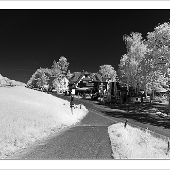 Zingst Countryside in InfraRed | KOBALUX 21MM F/2.8 <br> Click image for more details, Click <b>X</b> on top right of image to close