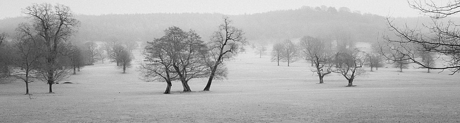 Derbyshire - Chatsworth House - The Estate - IR Experiment | LEICA ELMARIT 24MM F2.8 ASPH <br> Click image for more details, Click <b>X</b> on top right of image to close
