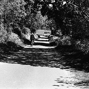 A Walk in the Country - Leica R6.2 - 50mm Summicron - TX400 | LEICA 50MM F/2.0 SUMMICRON 2ND  VERSION <br> Click image for more details, Click <b>X</b> on top right of image to close