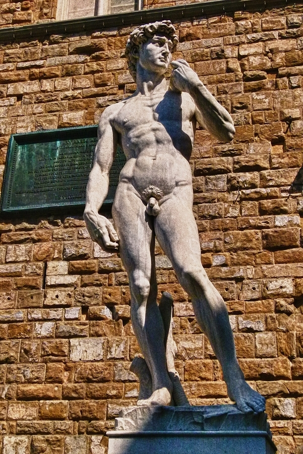David in Florence | LENS MODEL NOT SET <br> Click image for more details, Click <b>X</b> on top right of image to close