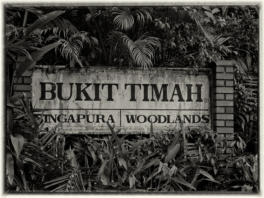 Bukit Timah Station | LENS MODEL NOT SET <br> Click image for more details, Click <b>X</b> on top right of image to close