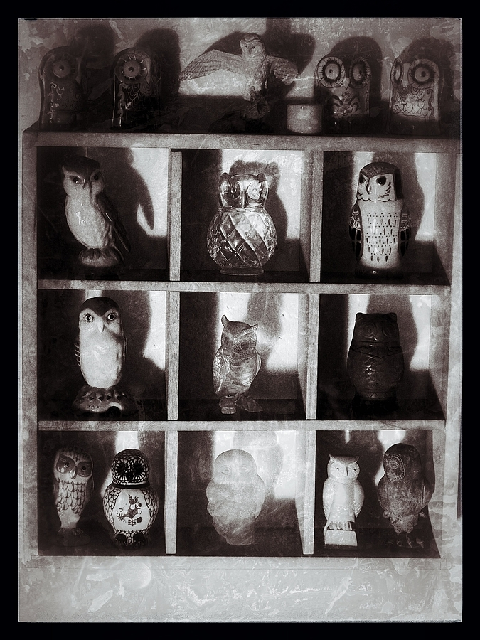 The Owls | LENS MODEL NOT SET <br> Click image for more details, Click <b>X</b> on top right of image to close