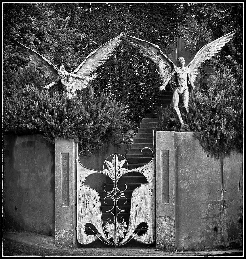 Angels at the garden gate | DC VARIO-ELMARIT 1:2.8-3.7/7.4-88.8 ASPH <br> Click image for more details, Click <b>X</b> on top right of image to close