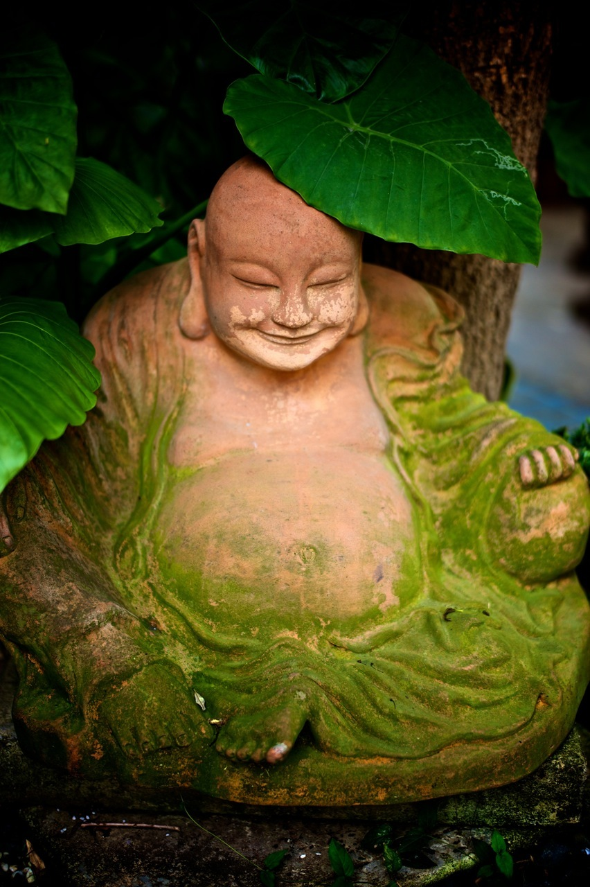 The happy 'green' buddha | SUMMILUX-M 1:1.4/50 ASPH <br> Click image for more details, Click <b>X</b> on top right of image to close