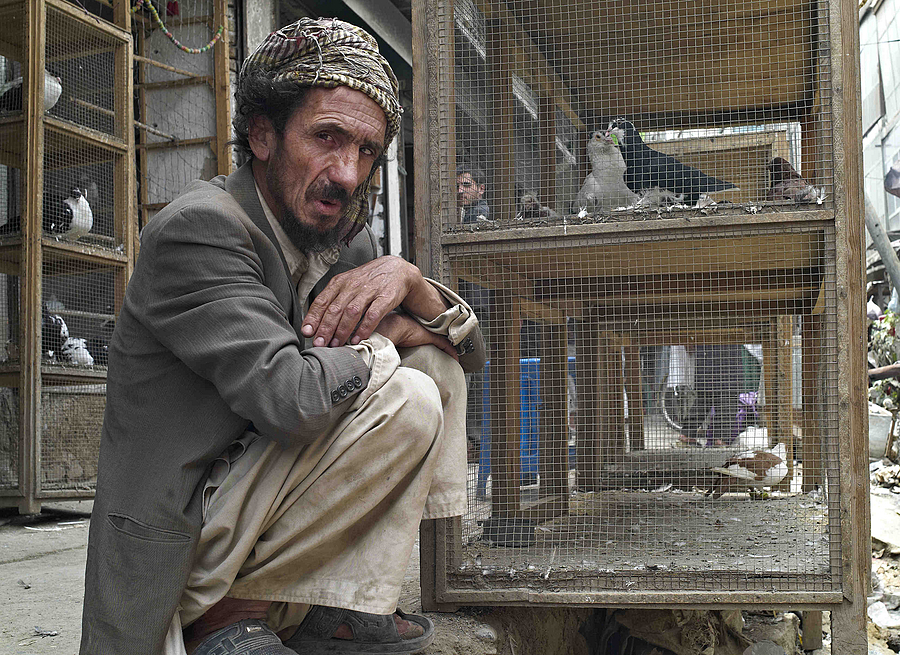 Fagins Bird Market Kabul | LEICA SUMMICRON 28MM F2 ASPH <br> Click image for more details, Click <b>X</b> on top right of image to close