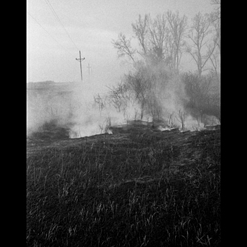Grass Fire II | MINOLTA M-ROKKOR 40MM F2 <br> Click image for more details, Click <b>X</b> on top right of image to close
