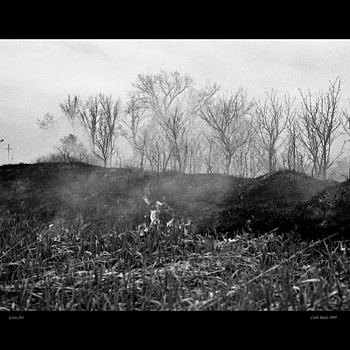 Grass Fire | MINOLTA M-ROKKOR 40MM F2 <br> Click image for more details, Click <b>X</b> on top right of image to close
