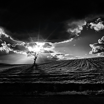Black and White Sunset | CV 21MM / F 4.0 COLOR SKOPAR <br> Click image for more details, Click <b>X</b> on top right of image to close