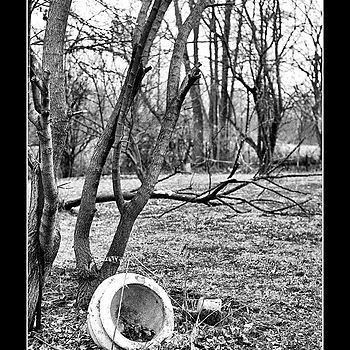 Abandoned Pot | ZEISS ZM C SONNAR T* F1.5 50MM <br> Click image for more details, Click <b>X</b> on top right of image to close