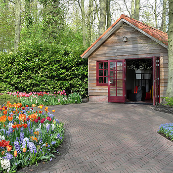 3 Les jardins de Keukenhof Hollande Pays-Bas | X1 ELMARIT 24MM F/2.8 ASPH <br> Click image for more details, Click <b>X</b> on top right of image to close