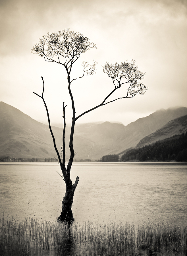 Wet day on Buttermere | LEICA SUMMILUX 50MM F/1.4 PRE ASPH (E46) <br> Click image for more details, Click <b>X</b> on top right of image to close