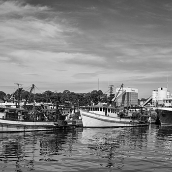 Blackwattle Fishing Fleet | LEICA SUMMICRON 35MM F2 ASPH <br> Click image for more details, Click <b>X</b> on top right of image to close