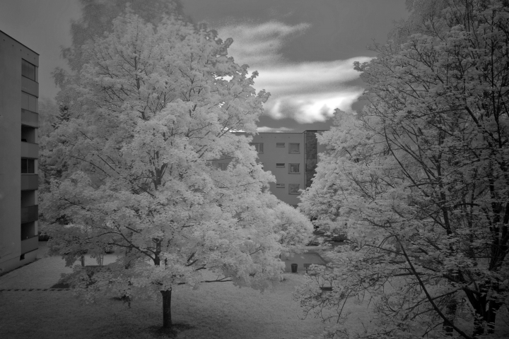 First attempts with IR - looking out my window | LENS MODEL NOT SET <br> Click image for more details, Click <b>X</b> on top right of image to close