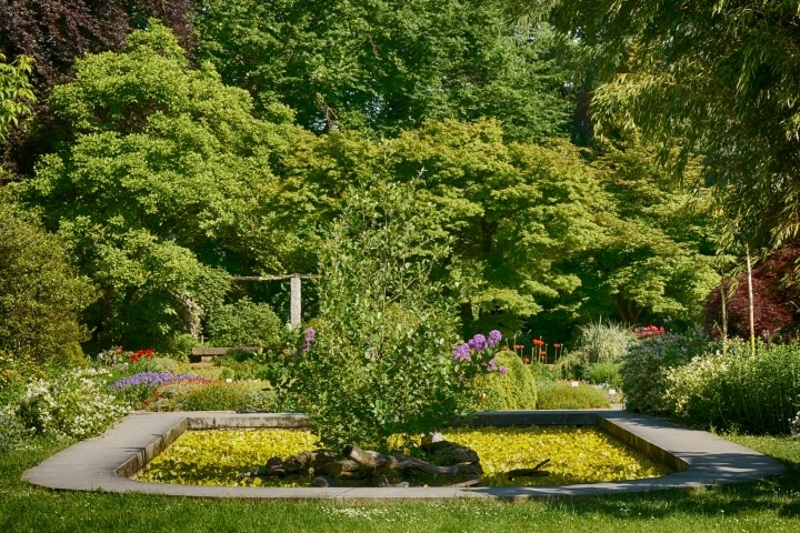 Beautiful garden | LENS MODEL NOT SET <br> Click image for more details, Click <b>X</b> on top right of image to close