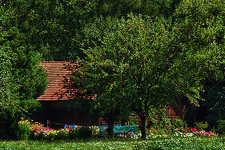 Old wooden house with garden and trees | LENS MODEL NOT SET <br> Click image for more details, Click <b>X</b> on top right of image to close