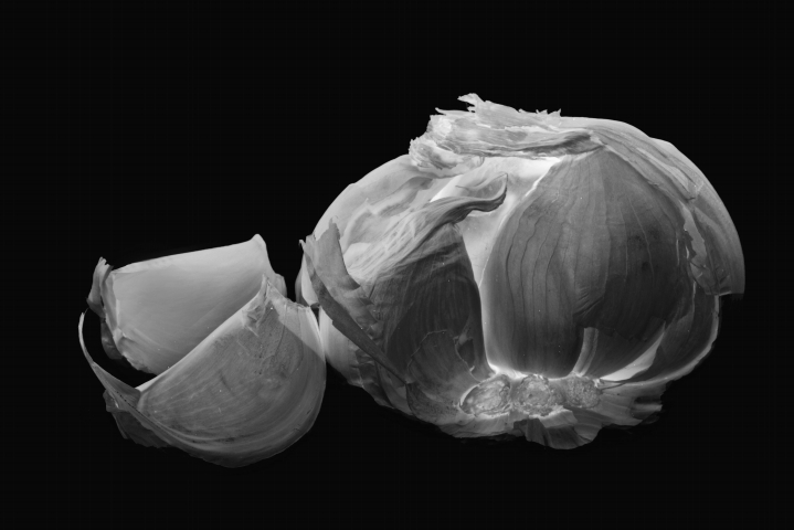 Garlic - some like it, some hate it | LENS MODEL NOT SET <br> Click image for more details, Click <b>X</b> on top right of image to close