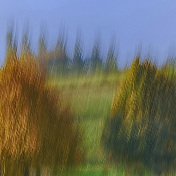 Landscape with trees - moving camera color | LENS MODEL NOT SET <br> Click image for more details, Click <b>X</b> on top right of image to close