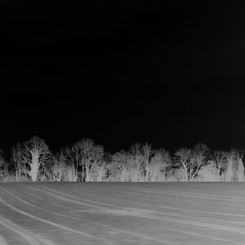 Landscape with trees - night and snow fantasy | LEICA ELMARIT 28MM F2.8 ASPH <br> Click image for more details, Click <b>X</b> on top right of image to close