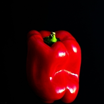 Bell pepper | LENS MODEL NOT SET