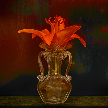 Blossom of a tiger lily in a glass vase | LENS MODEL NOT SET <br> Click image for more details, Click <b>X</b> on top right of image to close